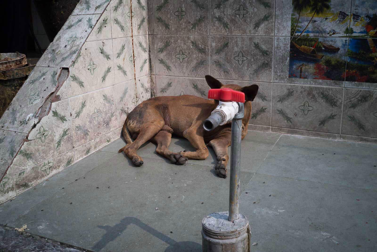 Pau Buscató: Fotografía callejera que transforma la cotidianidad en imaginación