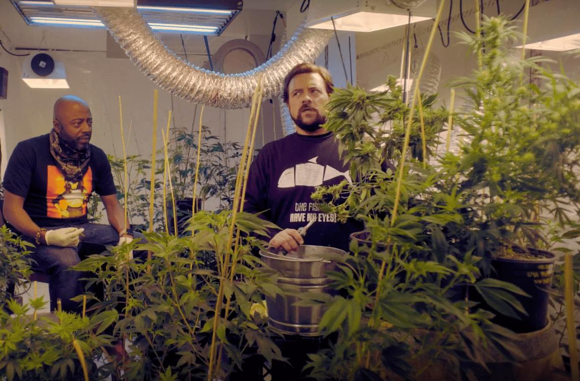 """Kevin Smith quiere venderte marihuana en el primer episodio de su serie """"Hollyweed"""""""