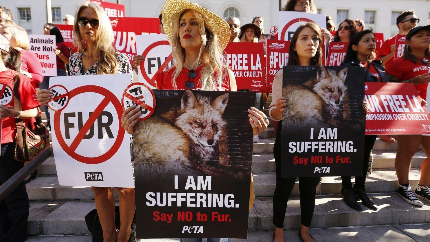 Fur: En una decisión histórica, California prohíbe la venta de pieles animales