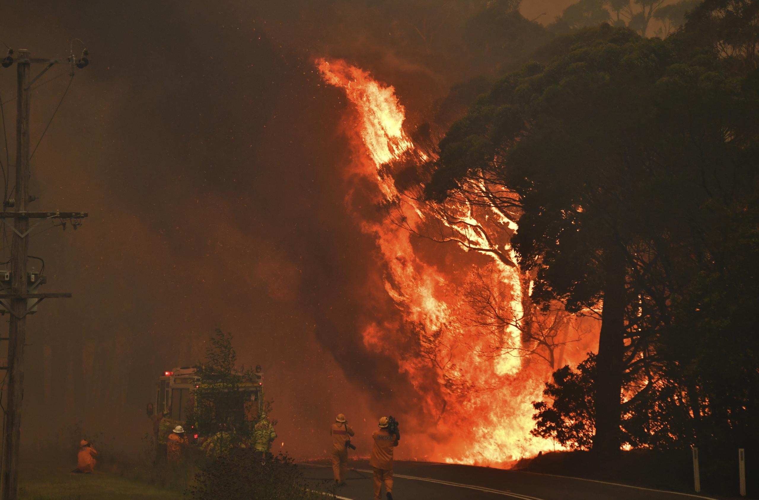 Australia: 6 claves para comprender la gravedad de los incendios que podrían mantenerse durante meses
