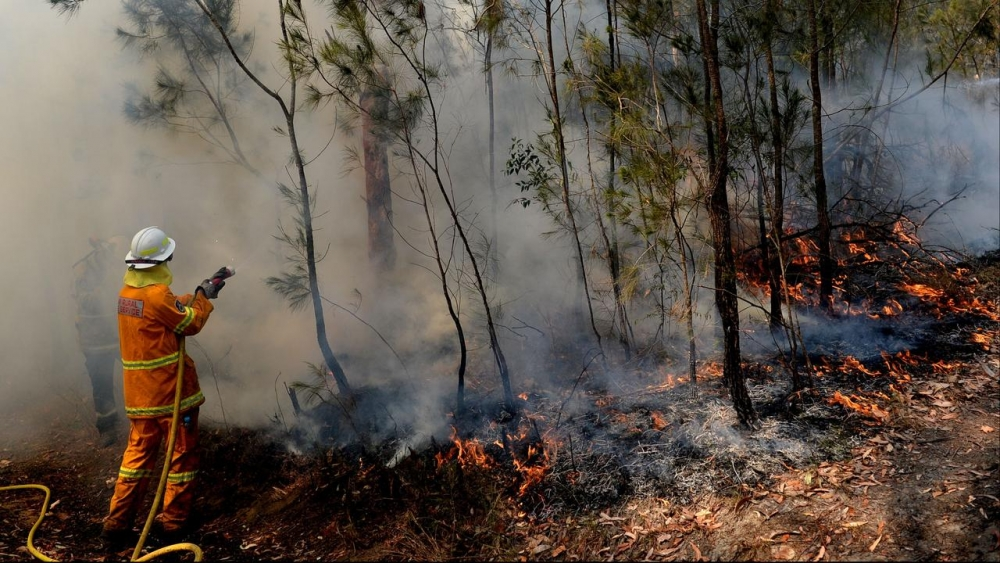 Australia: Bomberos continúan enfrentando propagación de incendios pese a las fuertes lluvias