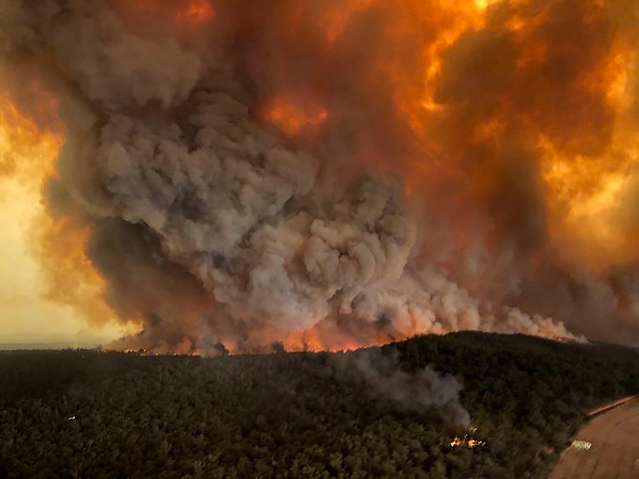 El humo de los incendios de Australia viajó 12.000 kilómetros y ya está en Chile, Argentina y Uruguay