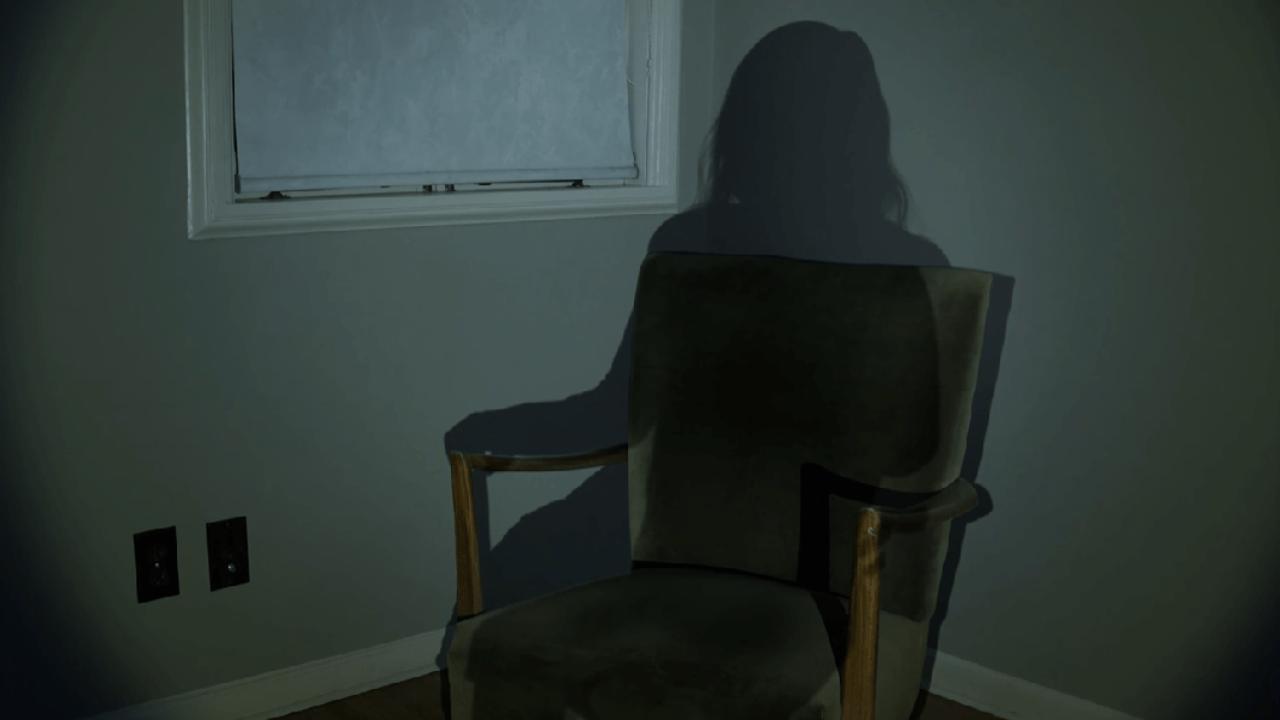 """""""Shadowed"""": Este corto de horror de tres minutos hará que le temas a tu propia sombra"""