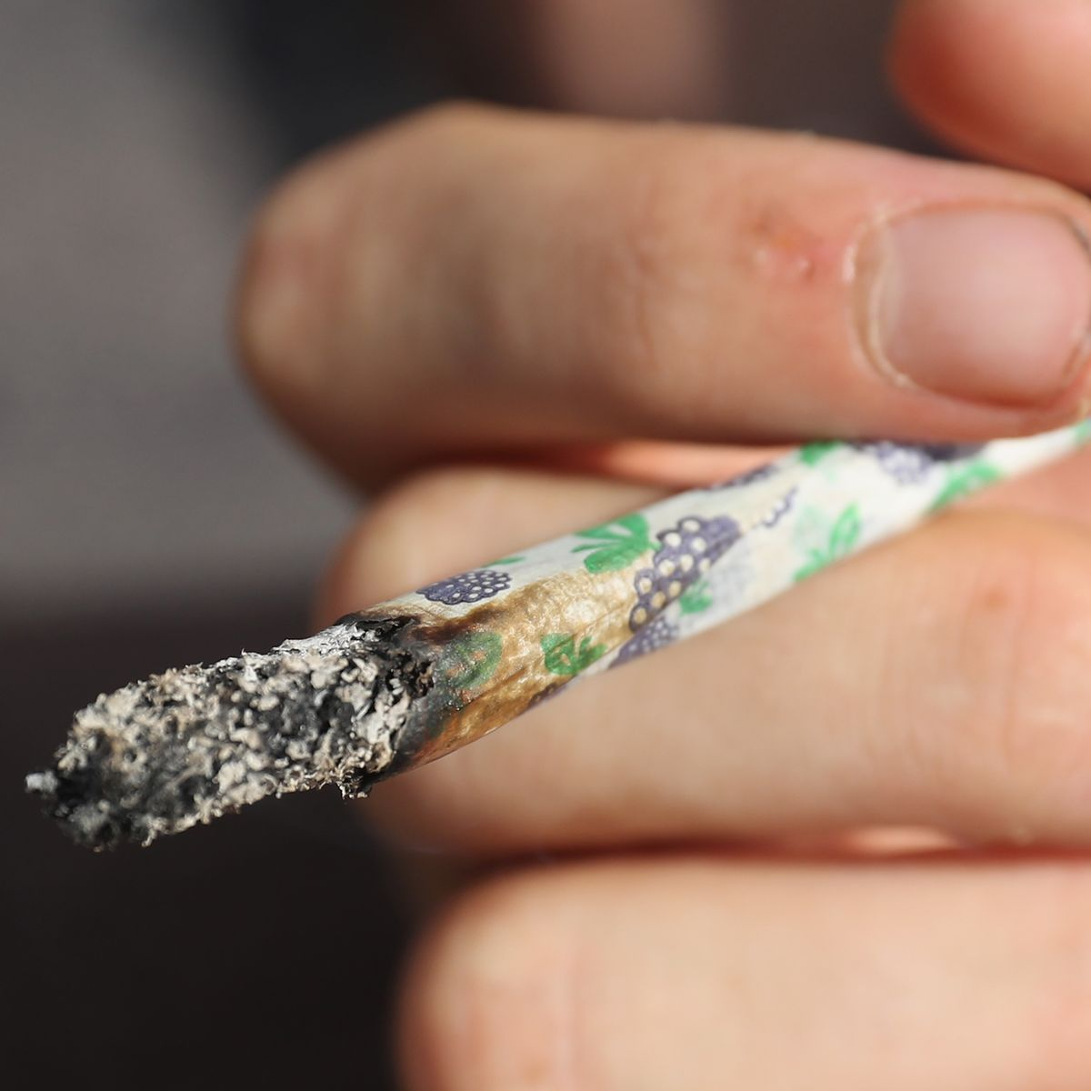 Consumo de marihuana afecta en el desarrollo intelectual, según estudio chileno