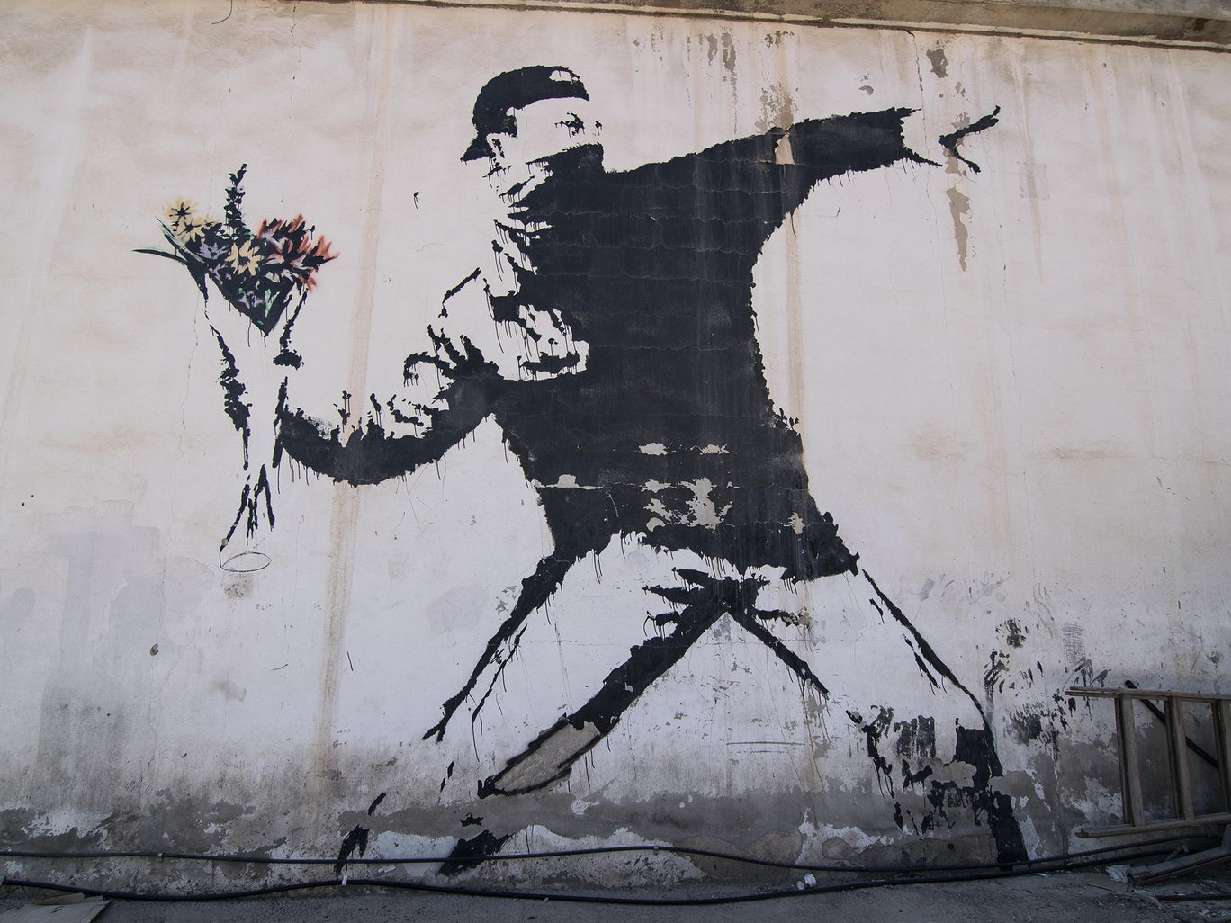 "Banksy pierde los derechos de autor de la icónica obra ""The Flower Thrower"""