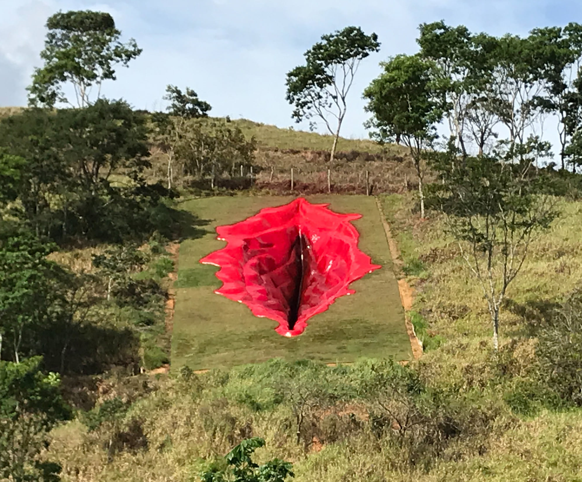 """Diva"", la obra de arte en forma de vulva que desató la ira de los conservadores en Brasil"