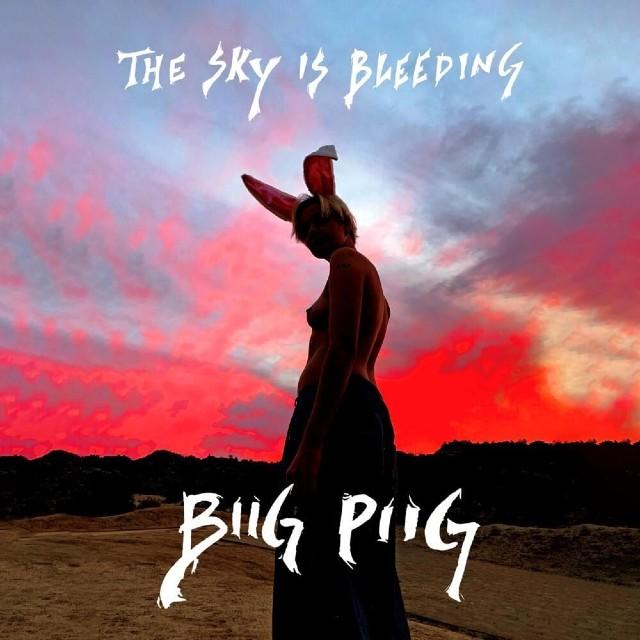 "Portada del álbum ""The Sky Is Bleeding"" de Biig Piig."